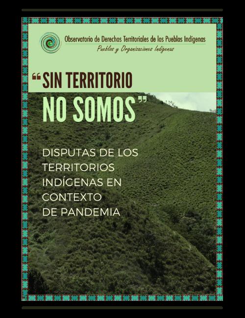 Disputa de los territorios indígenas en contexto de pandemia